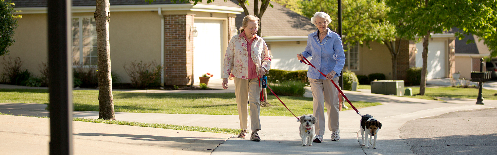 Two ladies walking their dogs at Kingswood Senior Living Located in Kansas City, MO. We are pet friendly.